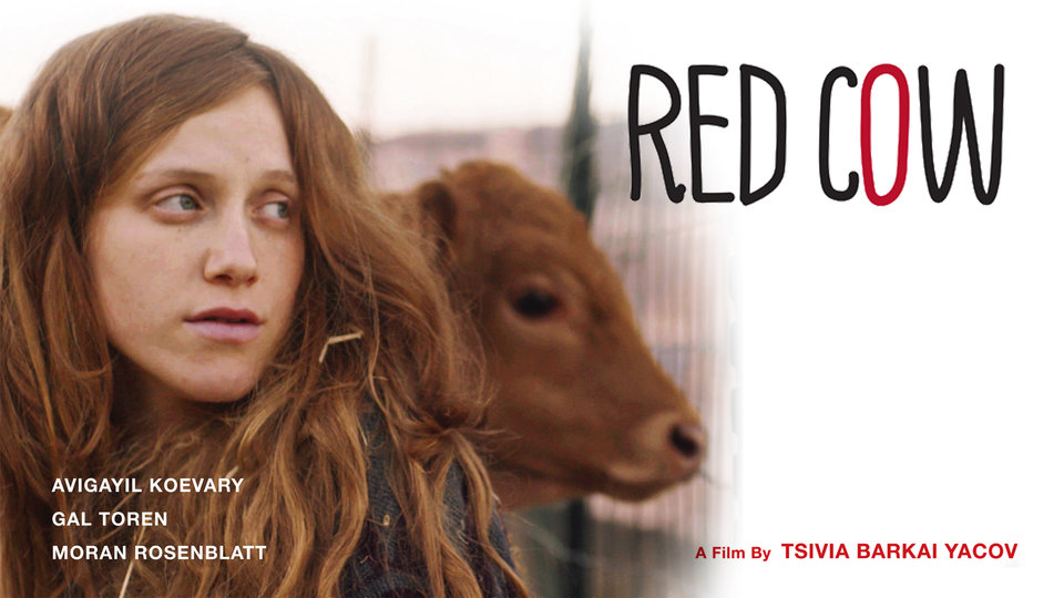 Red Cow