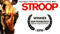 Stroop - Journey into the Rhino Horn War